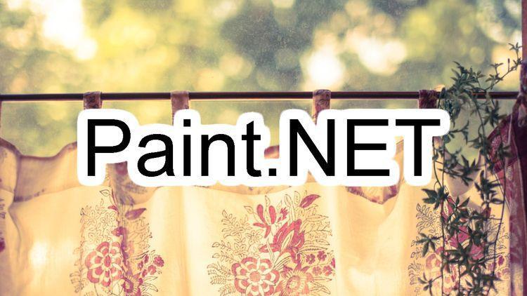 Vandermotten Paint Net